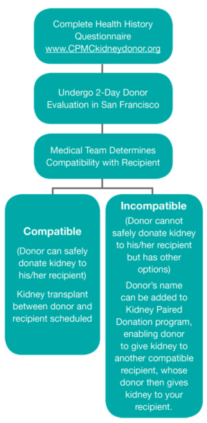 Living_Kidney_Donor_Transplant_Screening___California_Pacific_Medical_Center__San_Francisco___Sutter_Health.png